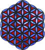 Flower of  Life (SOLD)